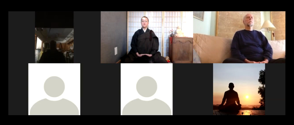 One of our Zoom meditation sessions - note you can choose to be seen, or opt for an image or icon.