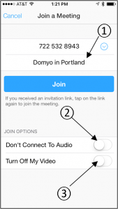 Zoom iPhone App - Change Settings - Arrows