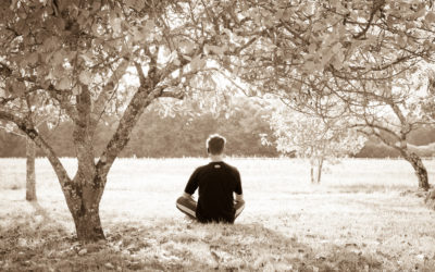 Renewal in the Stillness and Silence of Meditation